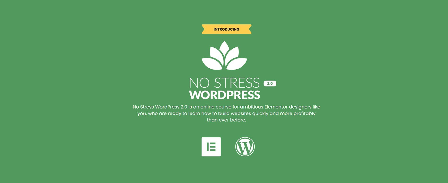 Download No Stress WordPress 2.0 By Dave Foy